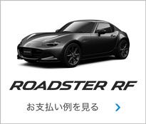 ROADSTER RF